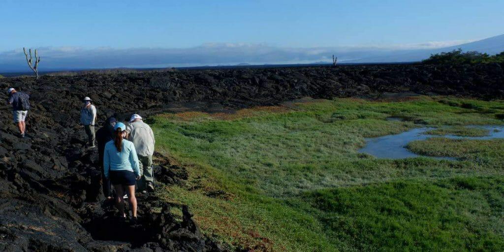 galapagos-islands-galaxy-1-cruise-experience