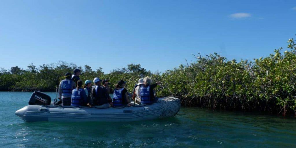 galapagos-islands-galaxy-cruise-experience