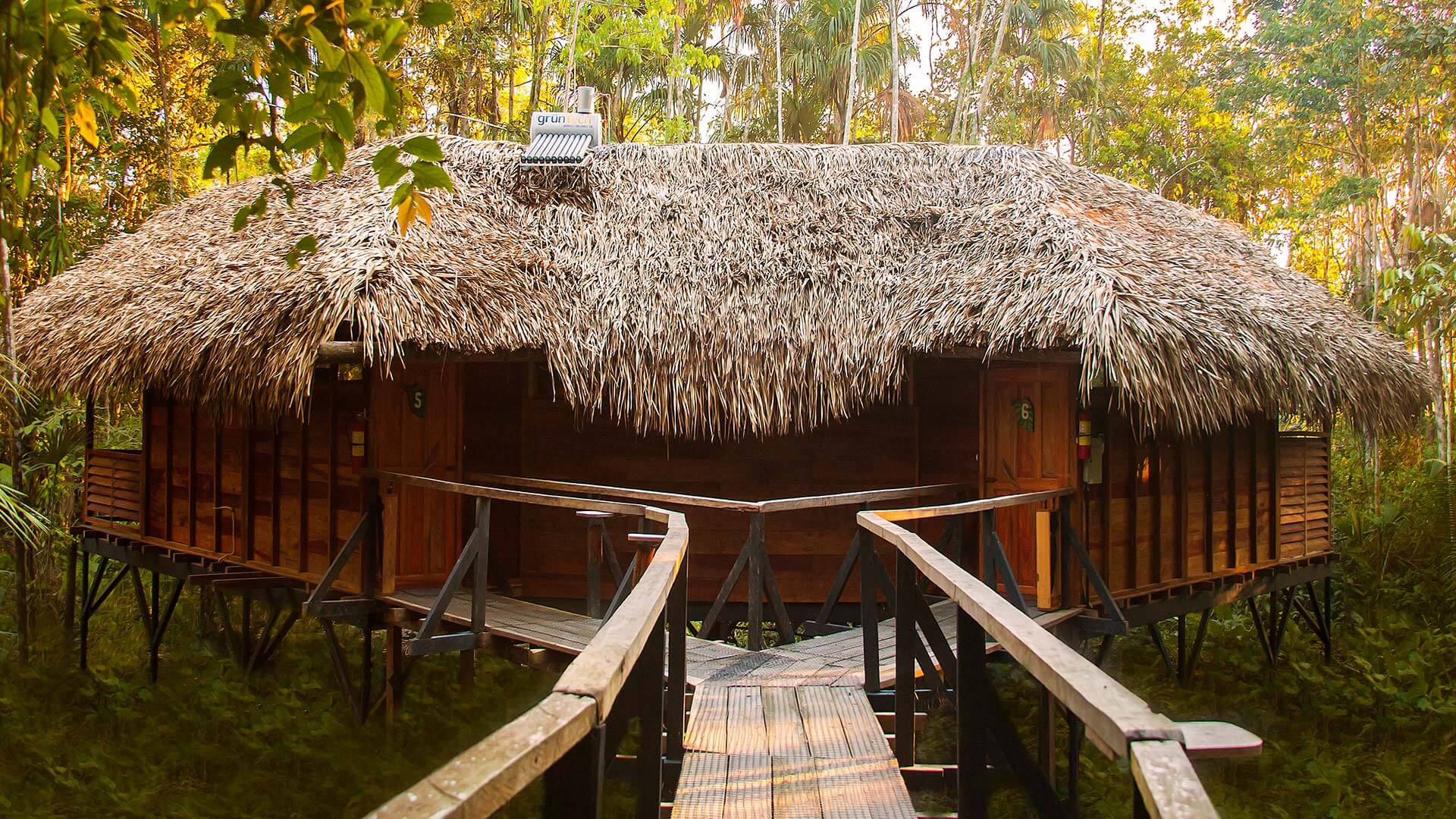 thatched roof lodge cabins in ecuador amazon rainforest