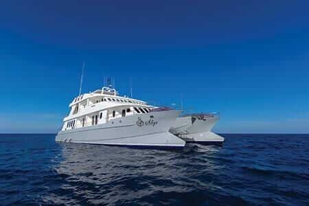 Alya yacht galapagos cruise charter
