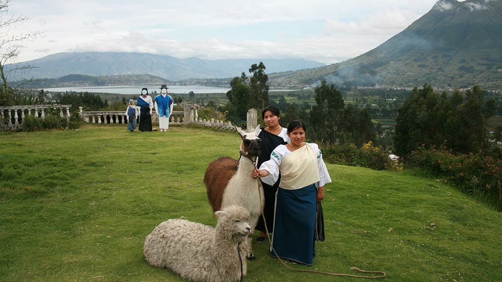 local indians in dress with alpacas by san pablo lake and imbabura volcano