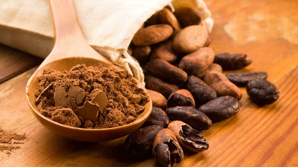cocoa beans and powder on mindo chocolate tour