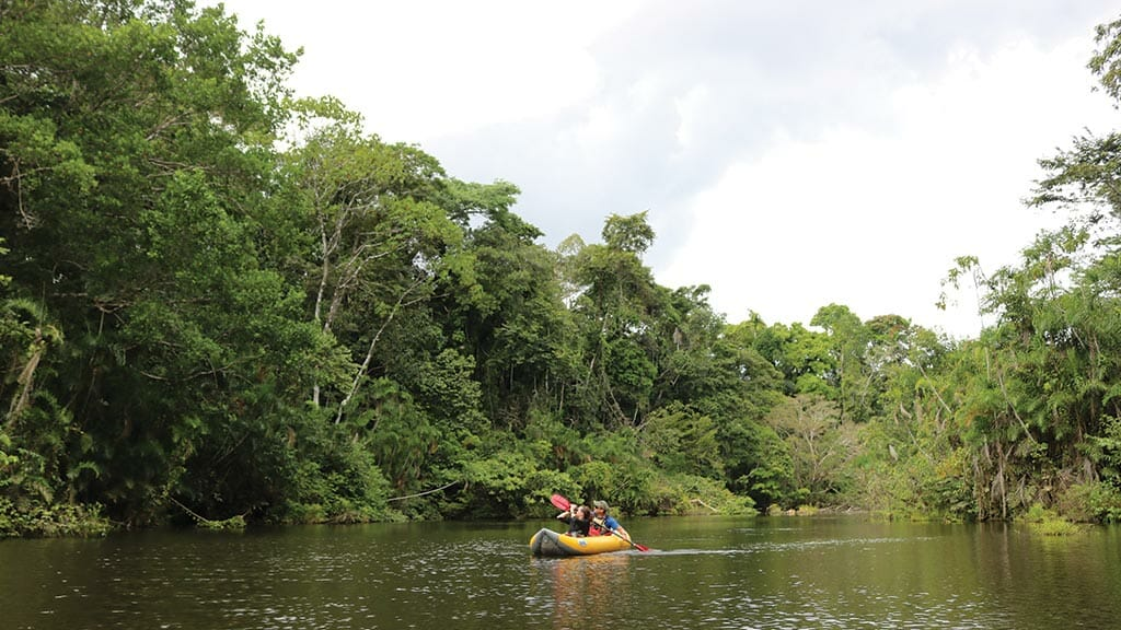 couple of tourists in rainforest kayak