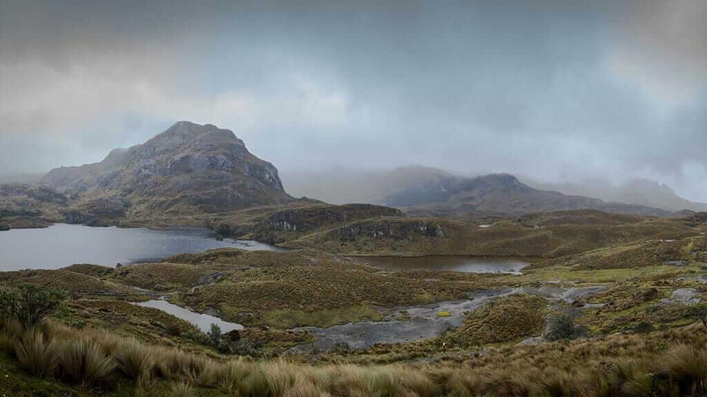 cloudy atmosphere at el cajas national park ecuador