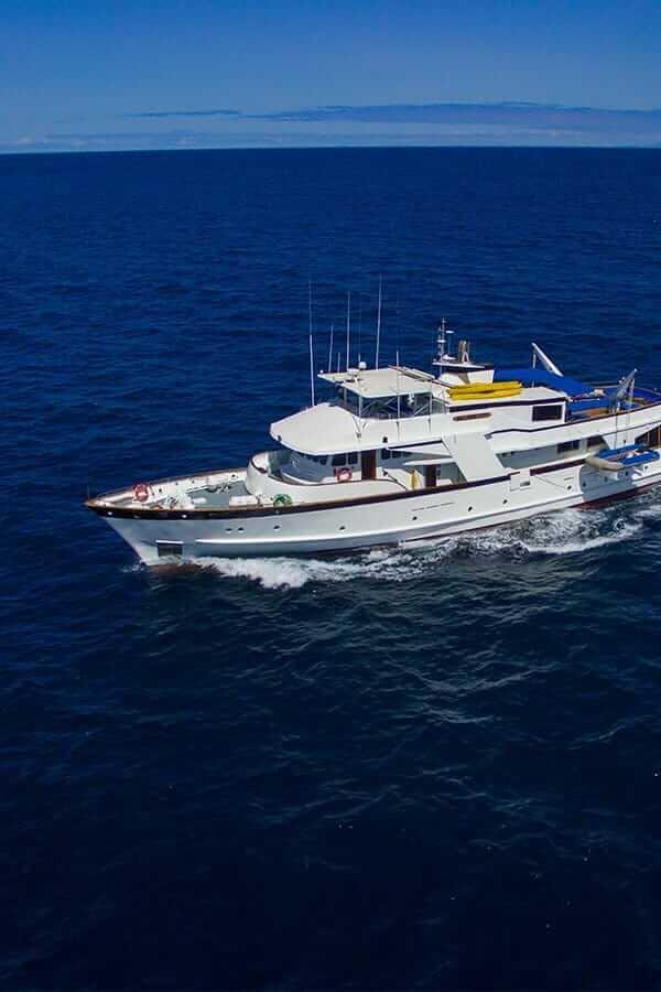 Cruise Charters