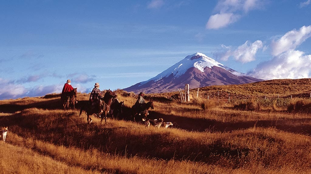 chagra horse riders with dogs in cotpaxi national park ecuador