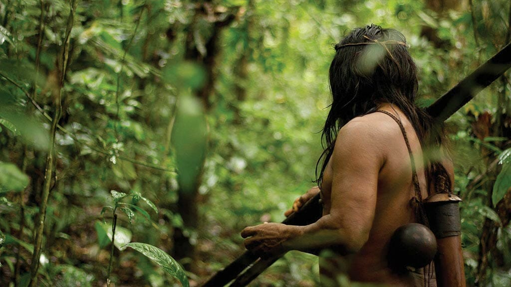 huaorani indian with blow gun in ecuador amazon jungle