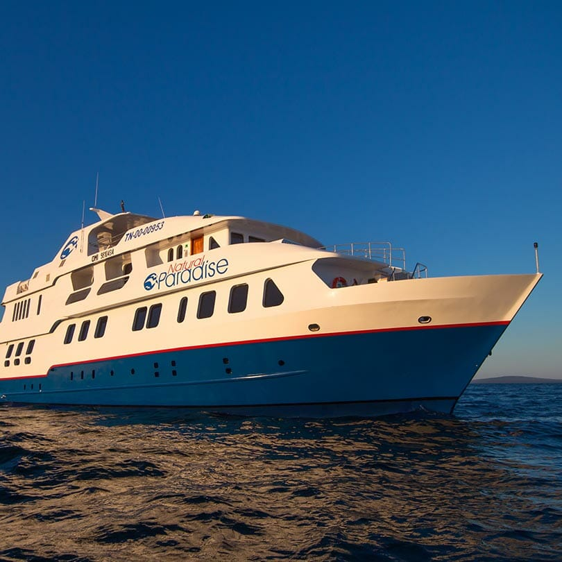 natural-paradise-cruise-in-galapagos-ecuador