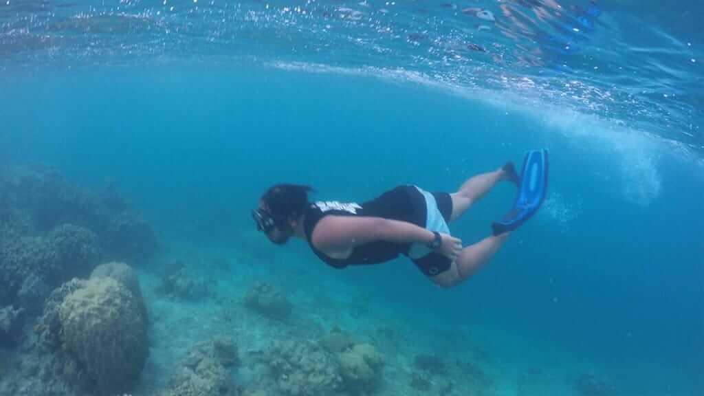 A Deluxe Galapagos Experience on board of the Ocean Spray Catamaran