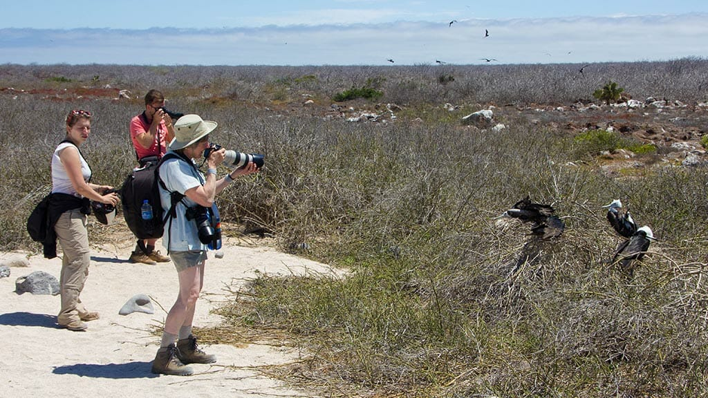 galapagos photography - tourists taking shots of booby birds