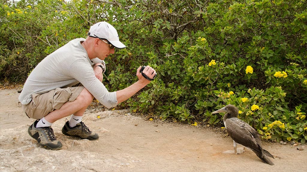 tourists-taking-a-photo-of-a-cormorant-in-the-galapagos-islands