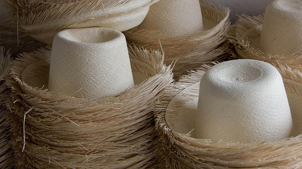see the traditional panama hat making process in cuenca ecuador