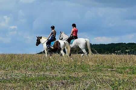 deux-filles-faisant-l'équitation-dans-la-forêt-des-nuages