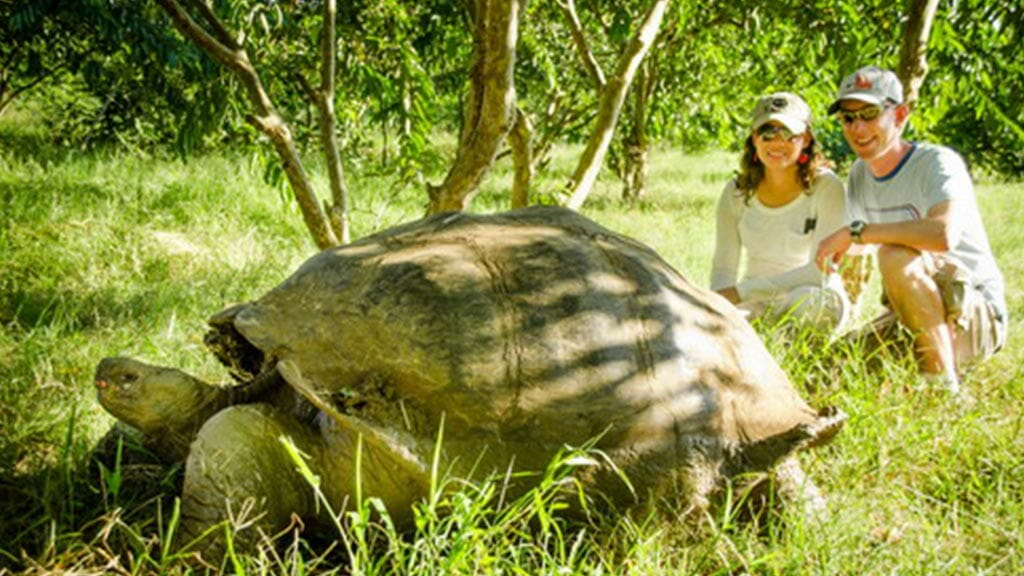 two tourists with a giant galapagos tortoise