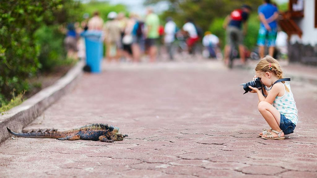 young rigl taking photo of a Galapagos marine iguana