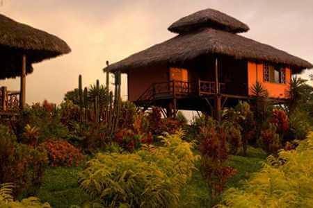 arasha resort ecuador - thatched roof bungalow on stilts
