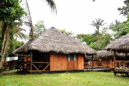 rustic thatched cabins at Siona lodge cuyabeno ecuador
