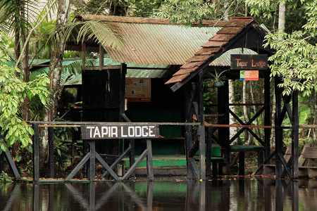 Entrance dock to Tapir Lodge in the cuyabeno reserve ecuador