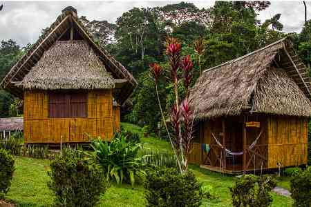 rustic thatched huts at Yarina Lodge in ecuador's amazon jungle