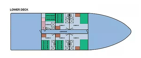 Cachalote Explorer yacht Galapagos cruise Deck Plan - Lower Deck