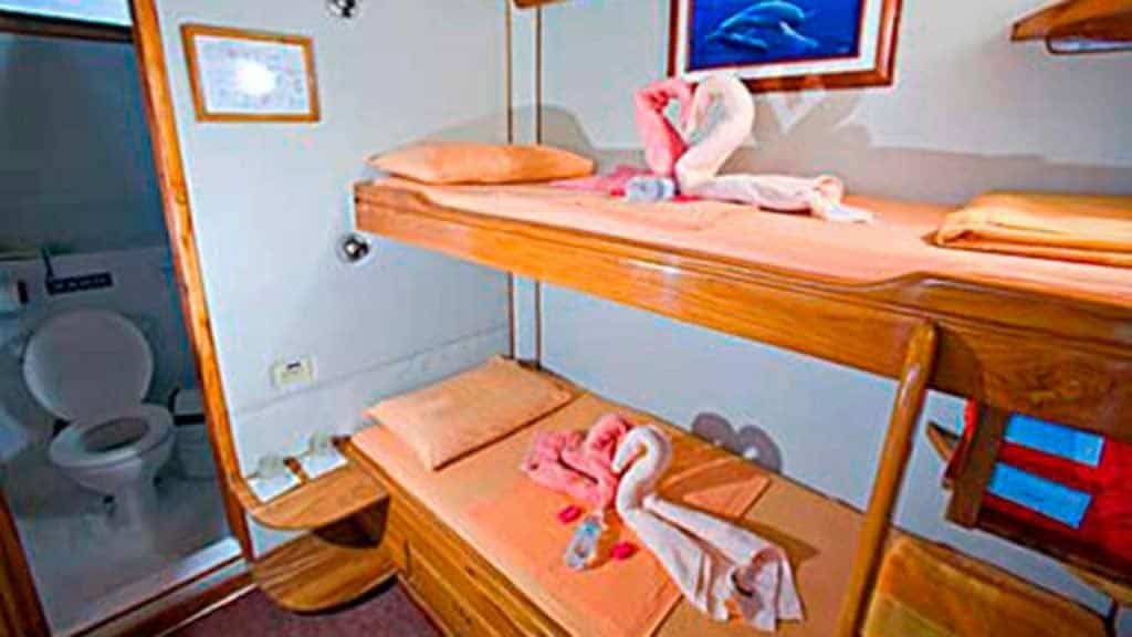 Aida Maria yacht - private bunk bed guest cabin - Galapagos islands cruise