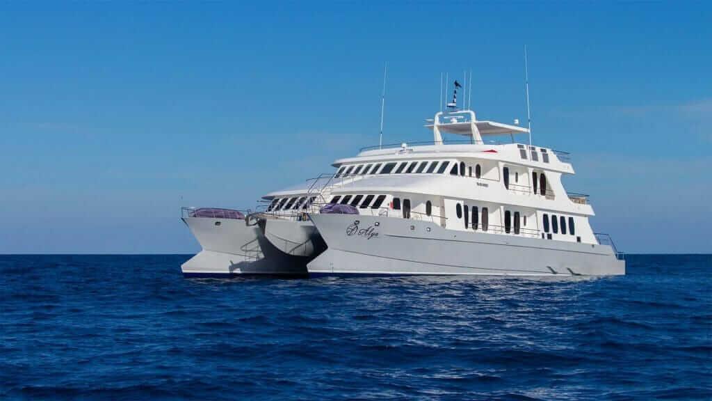Galapagos cruise - Alya catamaran yacht with blue ocean and sky