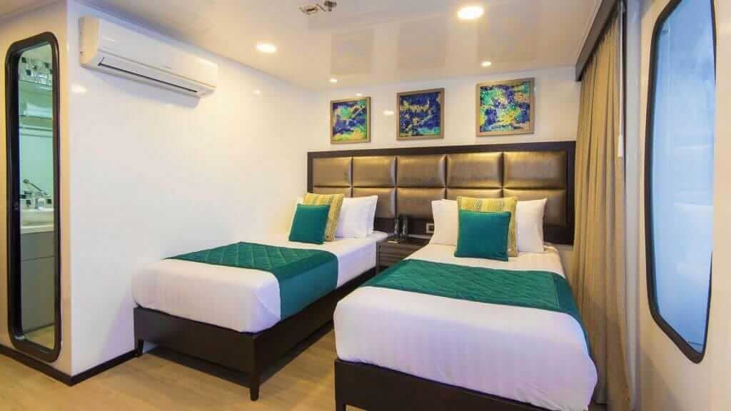 Alya catamaran Galapagos cruise - twin guest cabin with large window