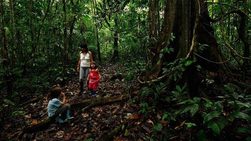 amazon dolphin lodge activities - tourists treking in the rainforest