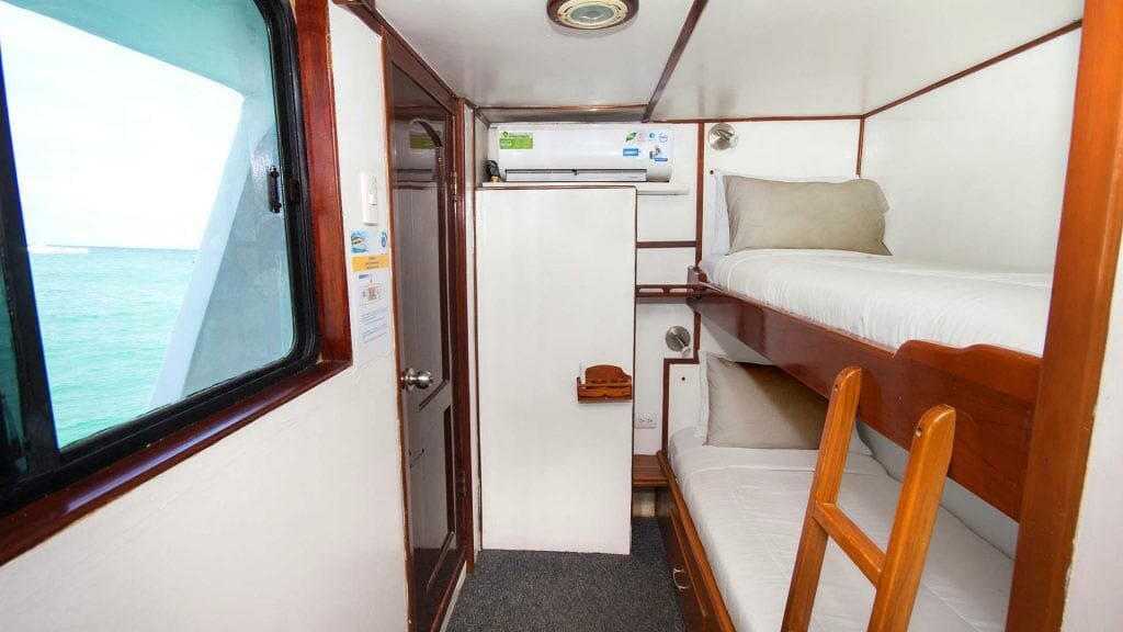 Aqua yacht Galapagos cruise - bunk bed guest cabin with large window