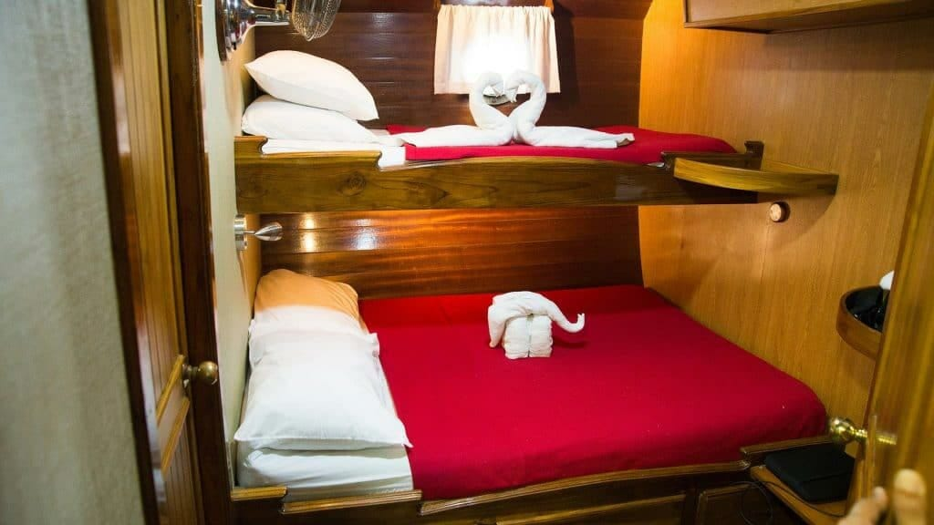 Beagle yacht Galapagos cruise - bunk bed cabin with lower double bed and upper single