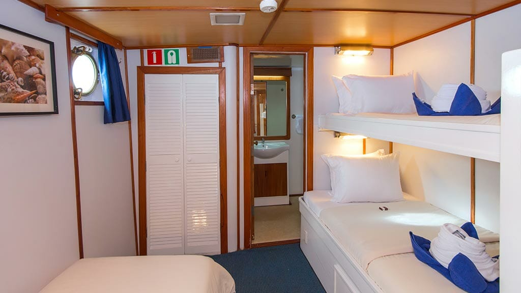 Beluga yacht Galapagos cruise - internal view of triple bed guest cabin