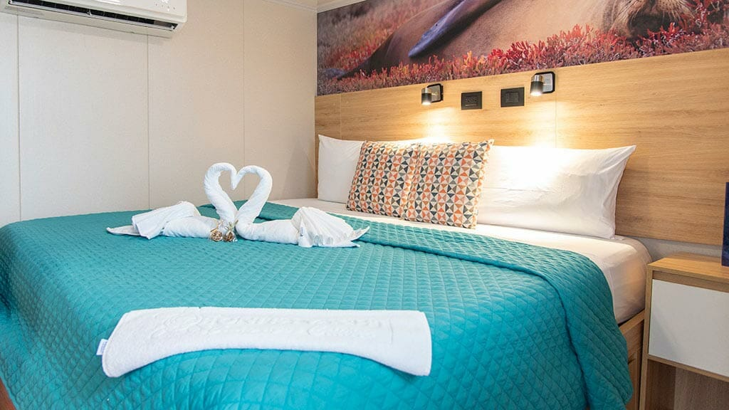 bonita yacht galapagos islands cruise - double bed guest cabin