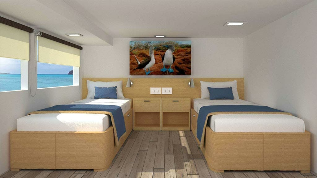 calipso yacht Galapagos islands cruise - twin cabin with large windows and wall hanging