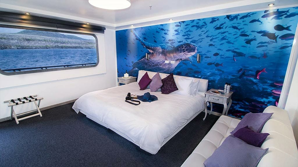 Camila yacht Galapagos cruise - spacious double bed cabin with sofa, large windows and wall image