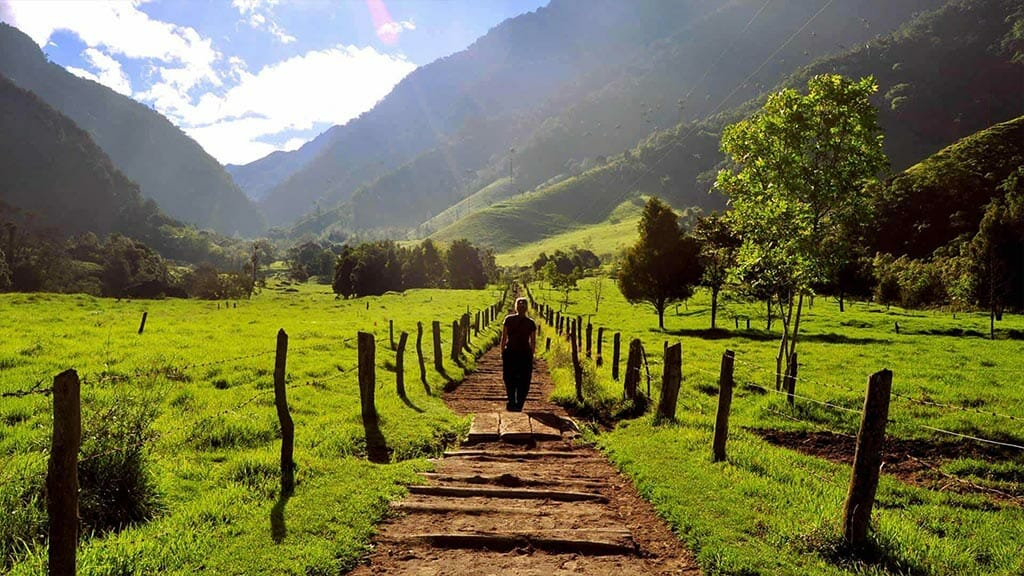 treking tour in the green mountains of colombia coffee triangle region