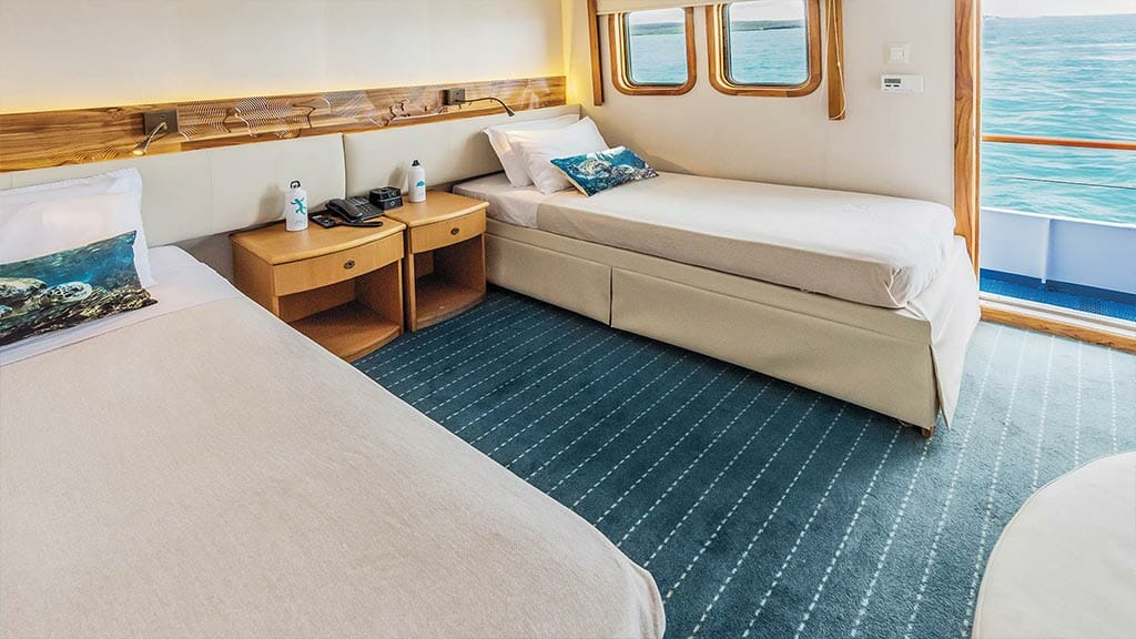 coral 1 and 2 yachts galapagos cruises - spacious Twin guest cabin
