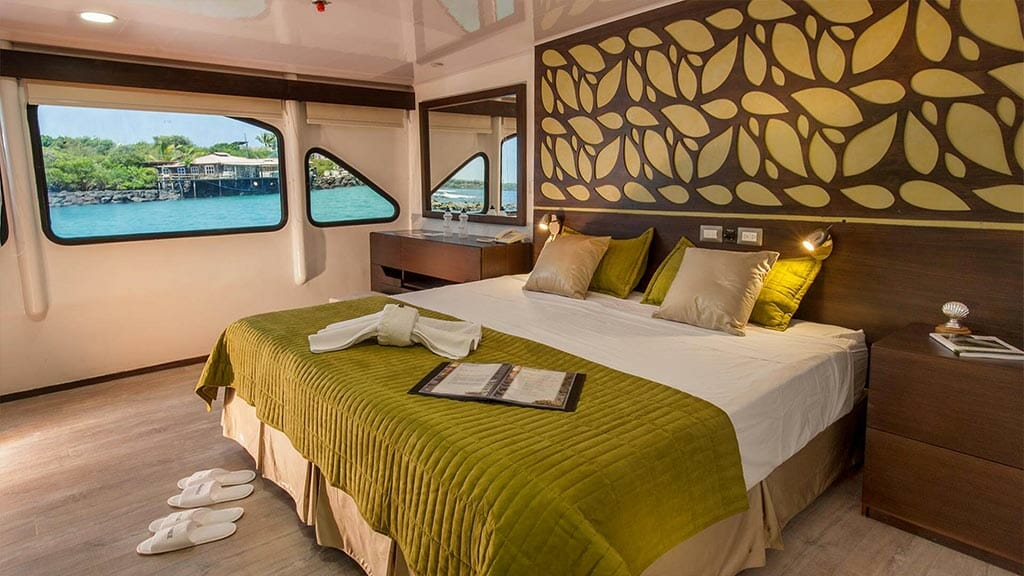 ecogalaxy II catamaran galapagos cruise - spacious double bed guest cabin with large window views