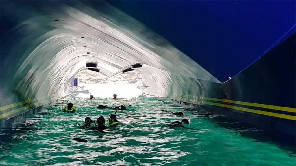 Endemic Yacht Galapagos Cruise - snorkeling underneath the catamaran