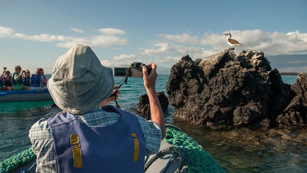 Fragata yacht cruise Galapagos Island - tourists take photo of a blue footed booby from their panga
