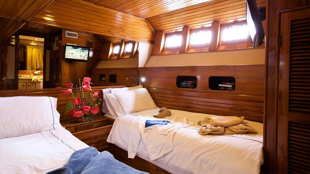 Aggressor III dive yacht Galapagos cruise - twin bed guest cabin