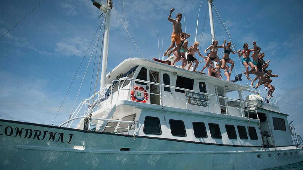 Golondrina yacht Galapagos cruise - tourists jump into the ocean