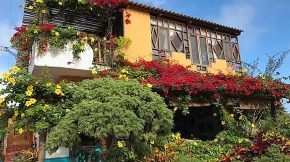 Lush gardens with colorful plants at casa del lago hotel puerto ayora