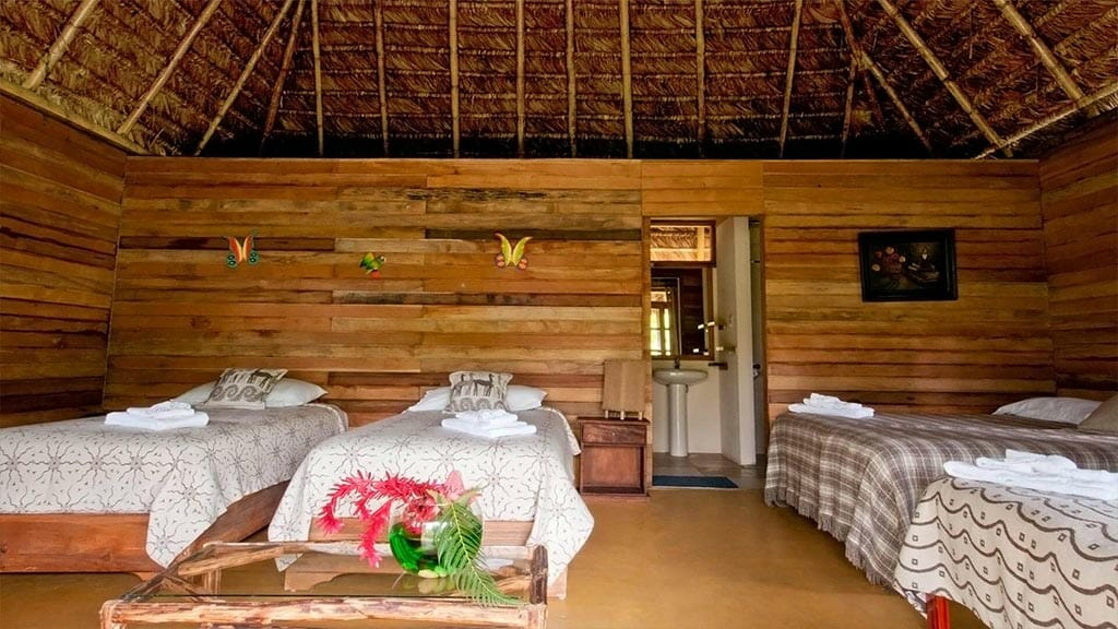 Huasquila Lodge Tena Ecuador - rainforest comfort in a cuadruple room with wooden walls and thatch roof