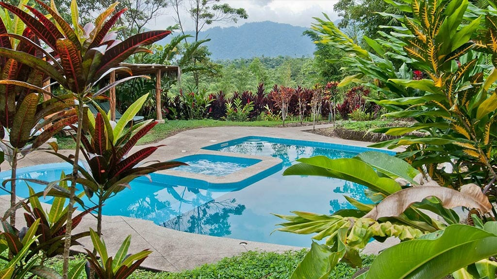 Huasquila Lodge swimming pool surrounded by rainforest plants, tena ecuador
