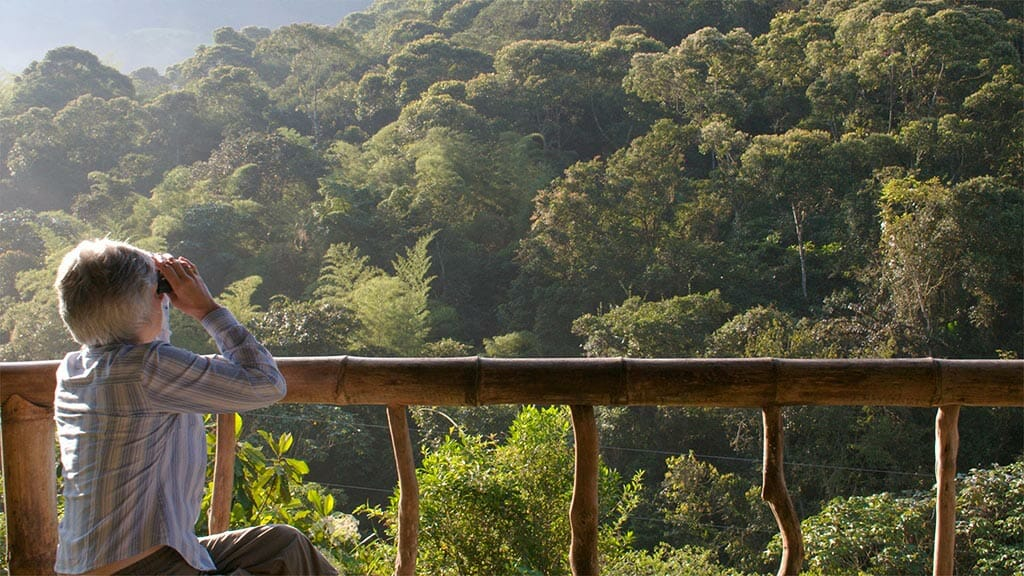tourists with binoculars appreciates cloud forest view from bamboo balcony maquipucuna lodge ecuador