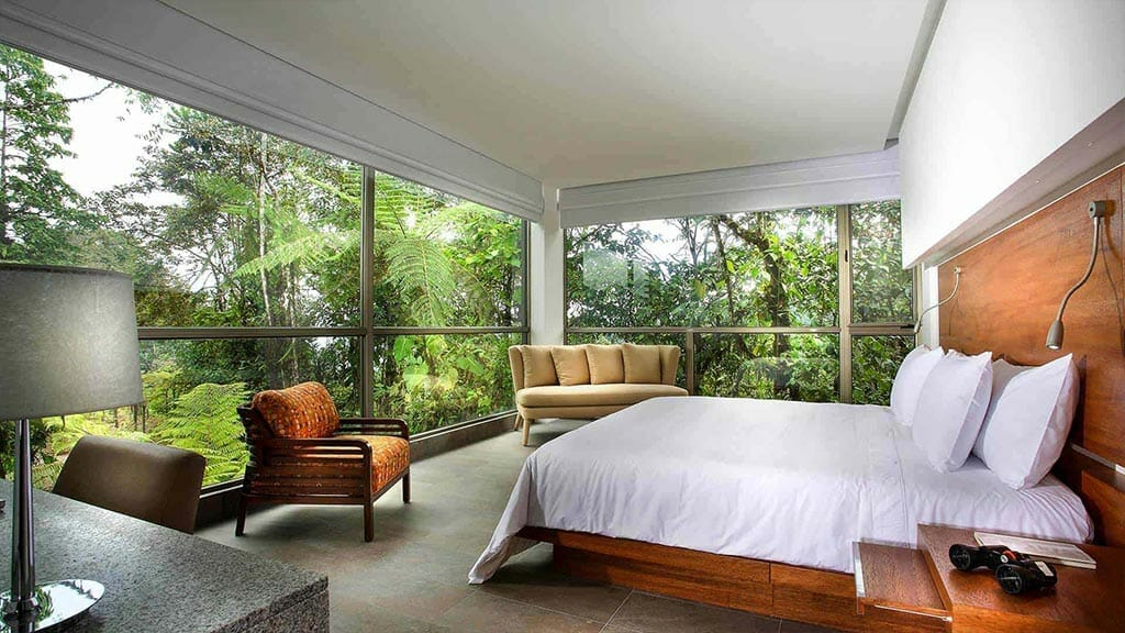 luxury mashpi lodge rooms overlooking the ecuador cloud forest