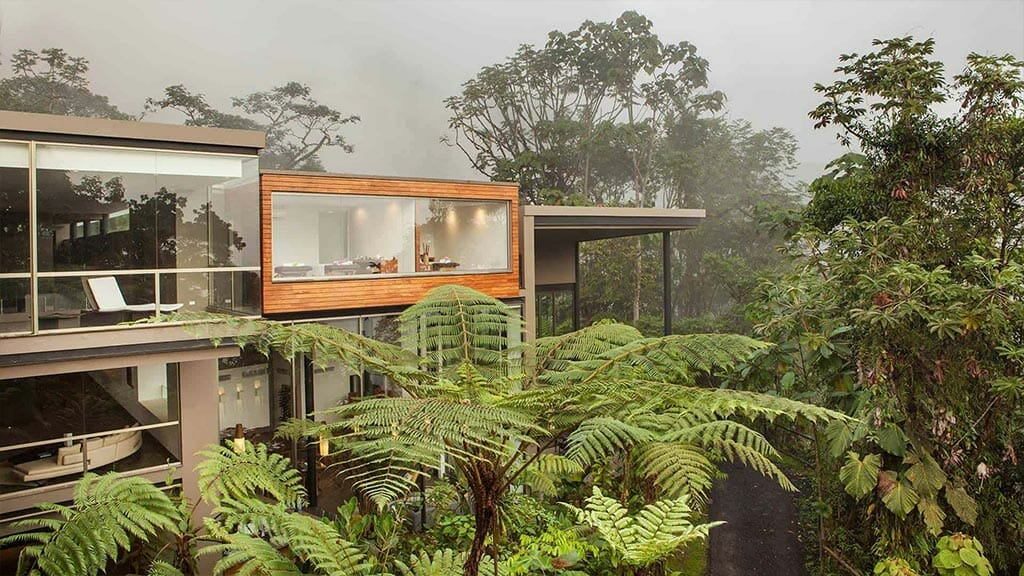luxury mashpi lodge rooms overlooking the cloud forest