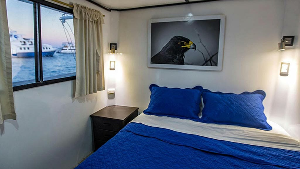 double cabin aboard the Monserrat Galapagos yacht
