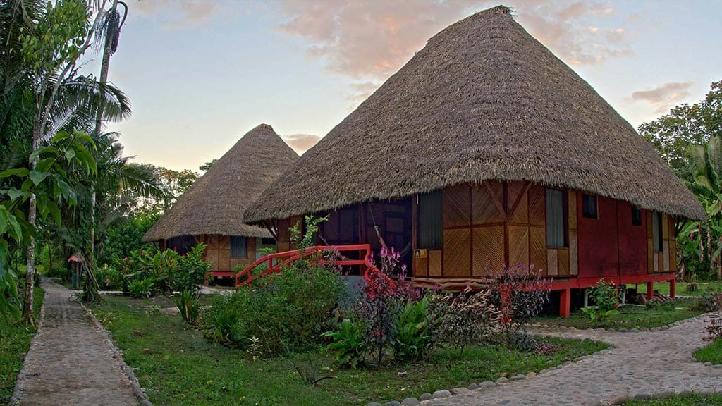 Napo cultural center rustic style thatched bamboo cabins in ecuador's amazon