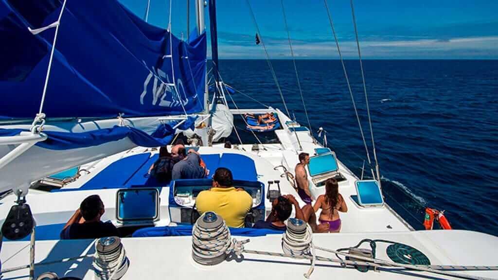 nemo 1 catamaran tourists on the upper deck